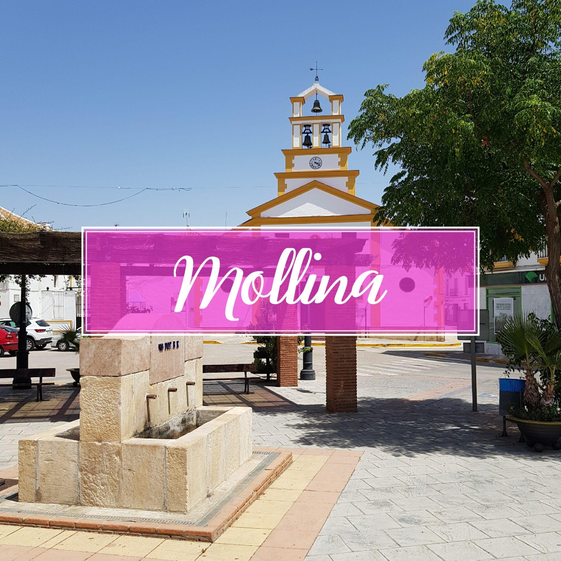 Mollina Town Village Malaga
