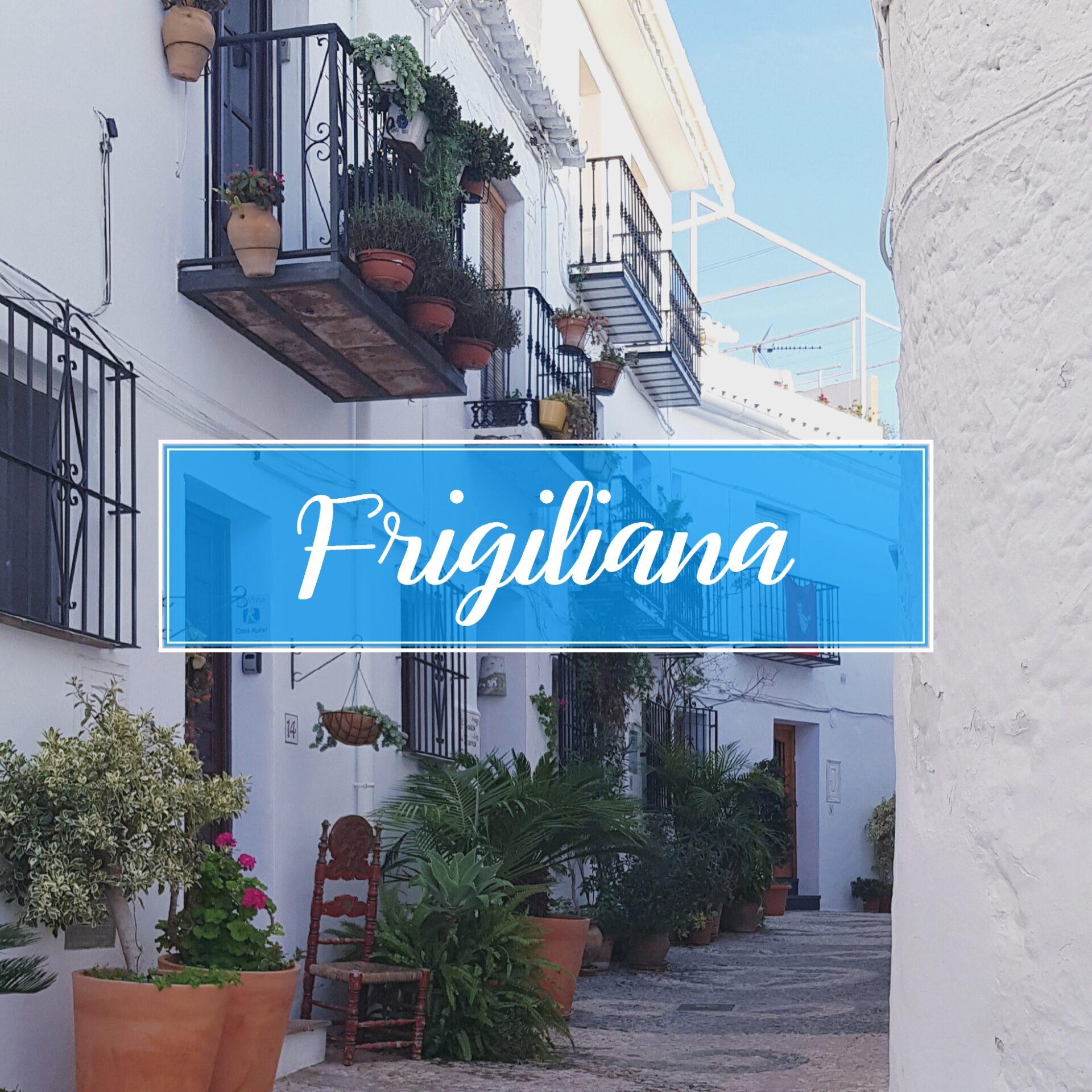 Frigiliana Town Village Malaga