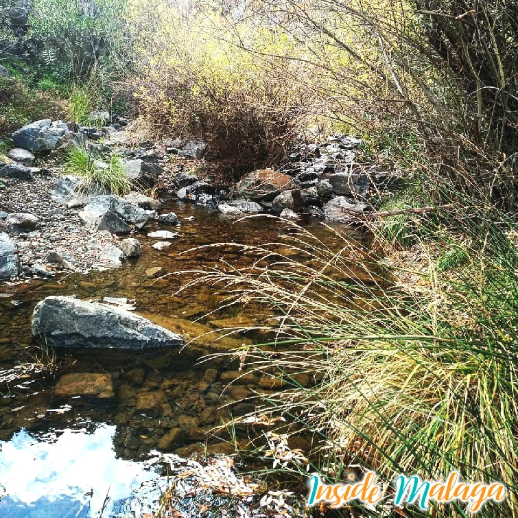 Tolox Trail