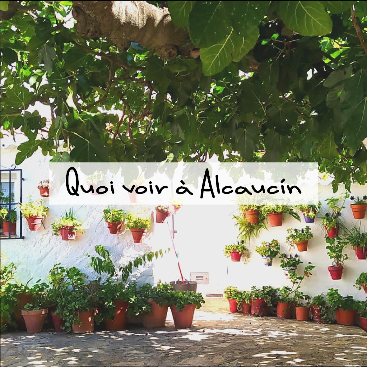 Quoi voir à Alcaucín