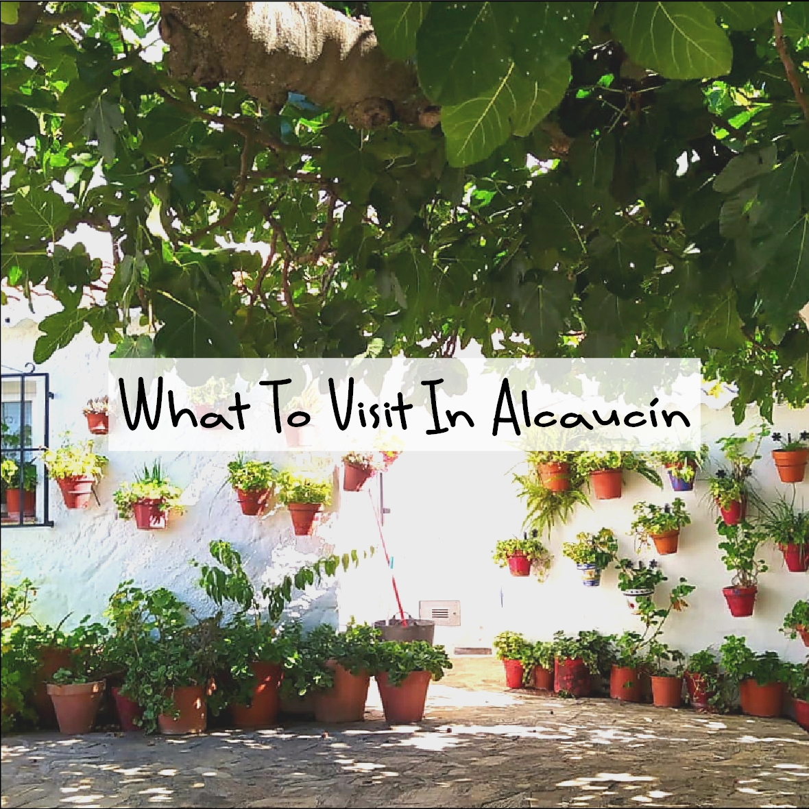 What to visit in Alcaucin