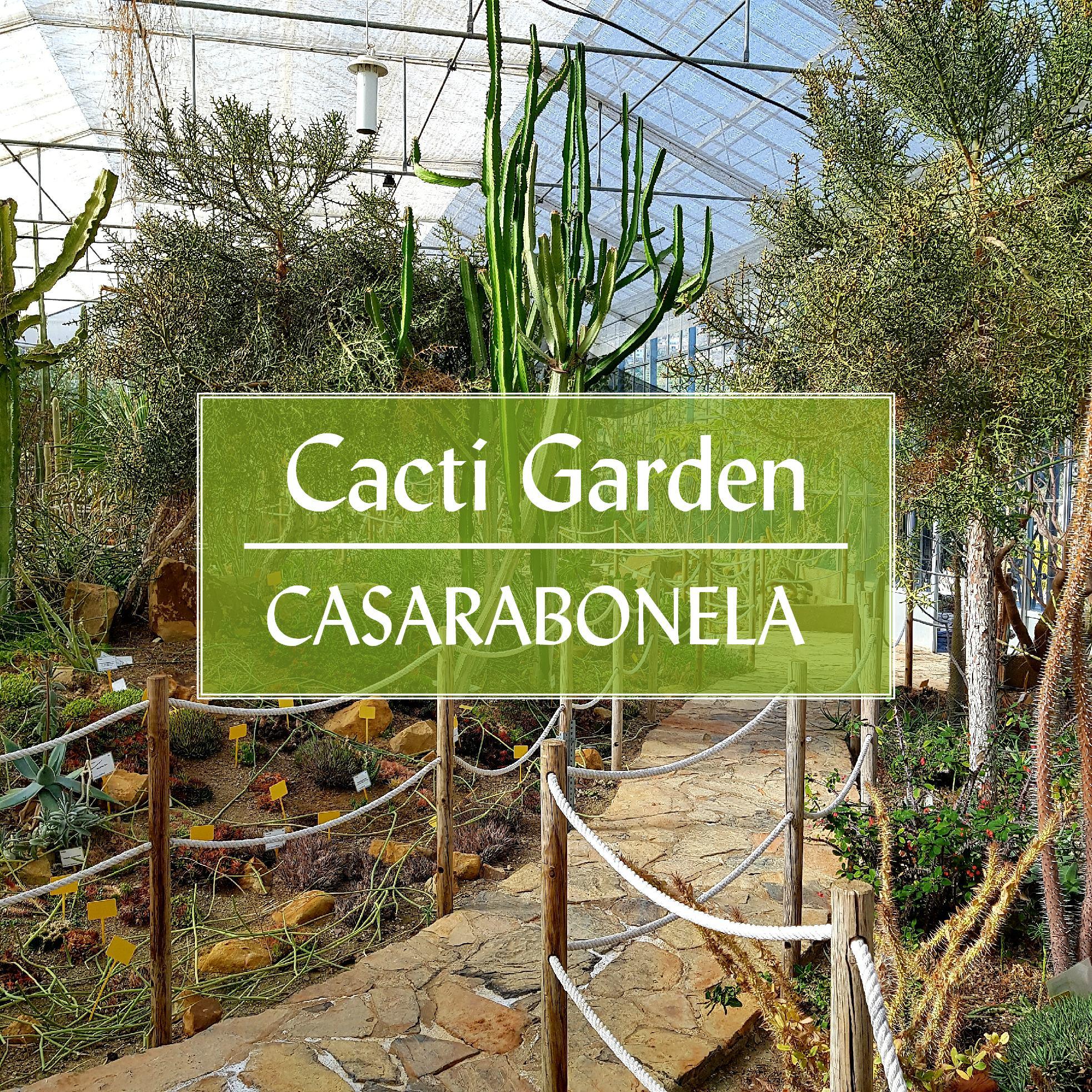 Botanical Cacti Garden Casarabonela Malaga