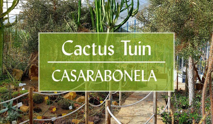 Botanische Cactus Tuin Casarabonela Malaga